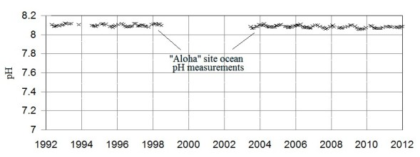 Aloha site measurements ny