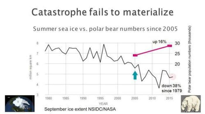 Isbjornar hotas av global uppvarmning