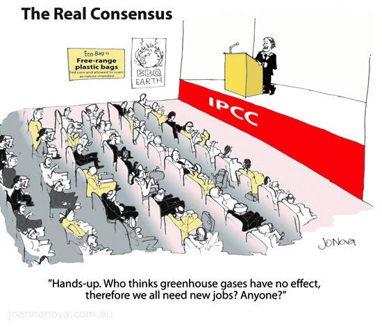 The real consensus ny